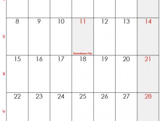 November 2021 Holidays Calendar Template
